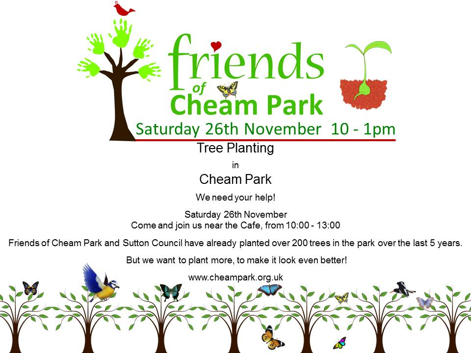 mary_friends-of-cheam-park_park